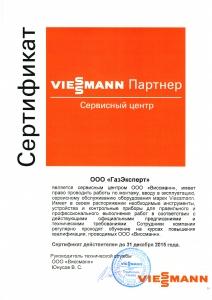 сертификат Виссман (2)